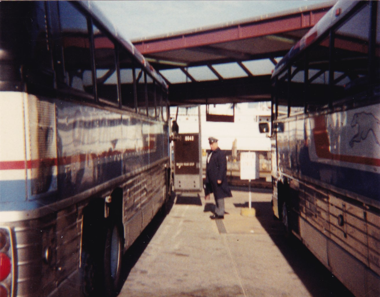 BusTalk :: View topic - 1984-2000 Greyhound Bus Pictures